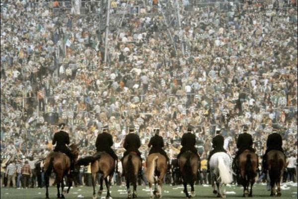 horses_arse
