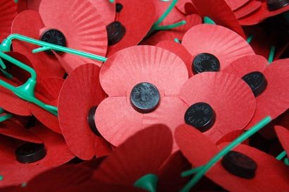 Let Me Wear My Poppy With Pride!