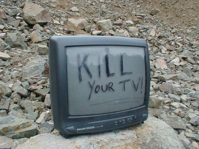 TV or Not TV? That is the Question